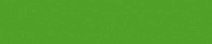 Carlsen_Logo_RGB